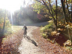Mountainbiken im Herbst