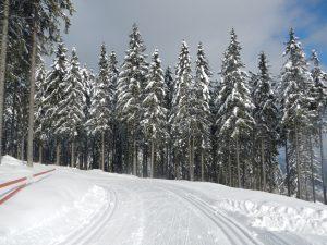 Langlaufen Panoramaloipe